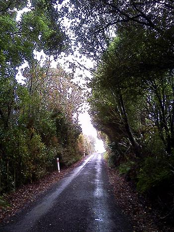 Waite Road, Pirongia