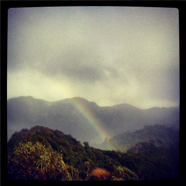 Rainbow, Nature, New Zealand, Mt Pirongia